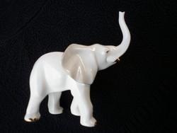 Aquincumi nagyon ritka szerencsehozó nagy elefánt