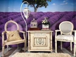 Provence bútor, antikolt fehér dohányzó asztal, utazóláda.