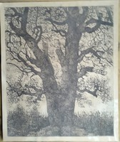 Imre István 1918.febr.24.-1983.aug.5.  Öreg fa rézkac mérete :lap 52cmX63,5cm, dúc 48,5cmX59,5cm