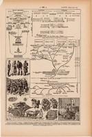 Szanitéc, egészségügy, nyomat 1923, francia, 19x29 cm, lexikon, eredeti, háború, hadi, tábor, orvos