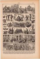 Borászat, nyomat 1923, francia, 19 x 29 cm, lexikon, eredeti, bor, szőlő, szőlészet, kád, must