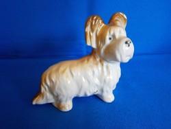 Aranyos porcelán kutya A06