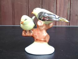 Aquincumi ritka madár páros