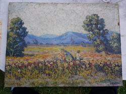 Virágos rét, kék hegyekkel, olaj festőfán, 40,5 x 55 cm, magyar szignóval