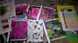 Virágok-disznövények ,leirása kezelése,ültetése útmutató több db .