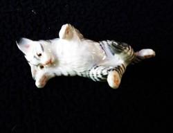 Pihenő cirmos cica