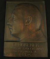 Brüll Alfréd MTK elnök bronz relief - nagyminta