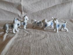 5 db mini porcelán kutya