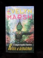 Evelyn Marsh, Krízis a kórházban