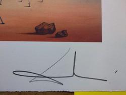 Salvador Dali litográfia