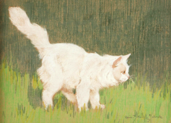 Rainerné Istvánffy Gabriella (1875 - 1964) Lopakodó perzsamacska