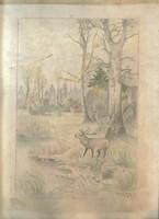 Bőgő szervas  - Babocsay L. /1929?/- ceruzarajz, színes ceruzával színezve, papíron /32 x 22,5 cm/
