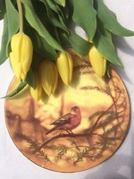 """""""Country Artists"""" sorozatból Dean Kendrick által megálmodott angol tányér 21cm"""