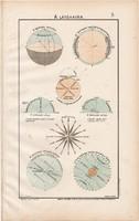 A látóhatár 1906 (2), eredeti, atlasz, csillagászat, szélrózsa, sík, távlat, átmetszet, délkör