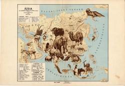 Ázsia állatföldrajzi térkép 1928, magyar nyelvű, 28 x 40 cm, állat, hal, madár, emlős, gerinces