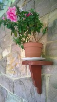Fali virágtartó fa, mahagóni pác, rlgi db