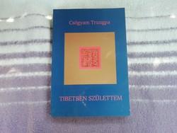 Csögyam Trungpa - Tibetben születtem