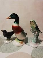 Bodrogkeresztúri madarak