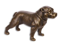 Vas kutya - staffordshire terrier