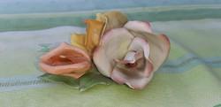 Aquincum rózsa