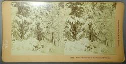 Sztereofotó téli tájról, 1900
