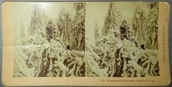 Sztereofotó amerikai téli tájról, 1893