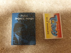Puskin: Jevgenyij Anyegin minikönyv