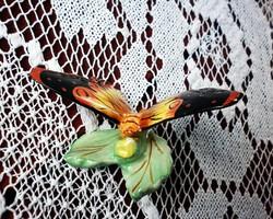 Ritkább Bodrogkeresztúri pillangó