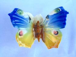 Ens pillangó