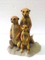Szurikáta család