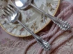 Gyönyörű ezüstözött tálaló szett