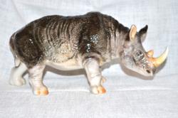 Nagy méretű orr szarvú