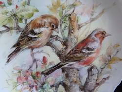 Royal Albert madaras dísztányér - erdei pinty