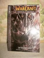 Richard A. Knaak : WarCraft - Napkút - trilógia 2. - Jégárnyak /Manga képregény /