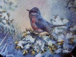 Wedgwood madaras dísztányér