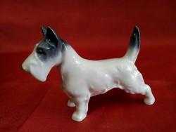 Metzler-Ortloff porcelán állatfigura kutya