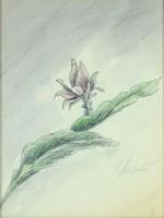 0Y091 Helmut Molinus : Virág