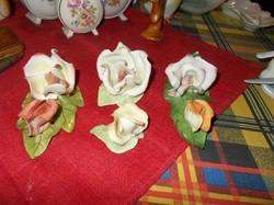 Sérült Aquincumi rózsák,