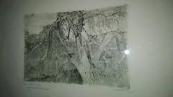 Nagy Sándor(1869-1950): Öreg fa utolsó virágai - a művész ajándékozó soraival,1933