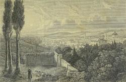 0Y279 Keretezett antik Firenze látkép