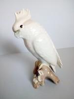 Atik papagáj porcelán nipp Royal Dux?