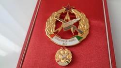 Stromfeld Aurél kitüntetés minijével..Ritka