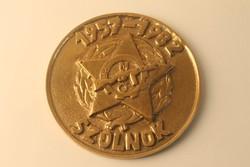 Réz plakett, Munkásőrség Szolnok 1957-1982