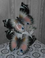 Karl Ens Pillangók nagyméretű