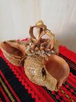 Gyönyörű tengeri kagylóból és csigákból készült egyedi díszkosár