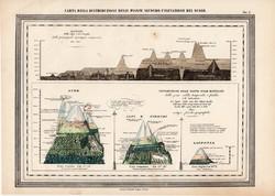 Növényzet eloszlása magasság szerint térkép 1861, olasz, eredeti, atlasz, nyomat, növény, Föld