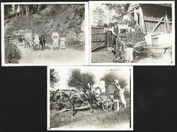 Paraszti népélet a régi magyarországon / fahordás - szüret - kukorica hordás góréba