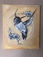 Fekete kolibri