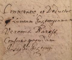 GOSZTONYI GENEOLÓGIA!!! 1700-as évek, 4 oldalas magyar nyelvű irat!