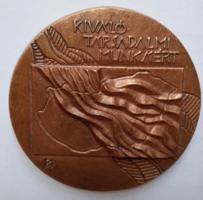 9,5 cm-esKiváló társadalmi munkáért bronz plakett, 34,5 dkg